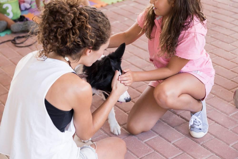 Perros en terapia