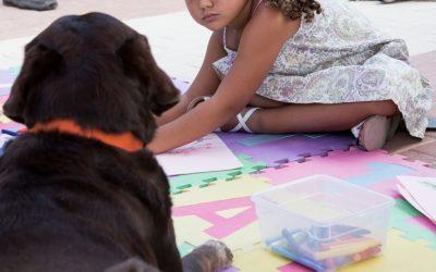 Bienestar perros de terapia. Investigación y congreso
